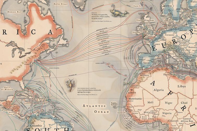 internet kablo haritası
