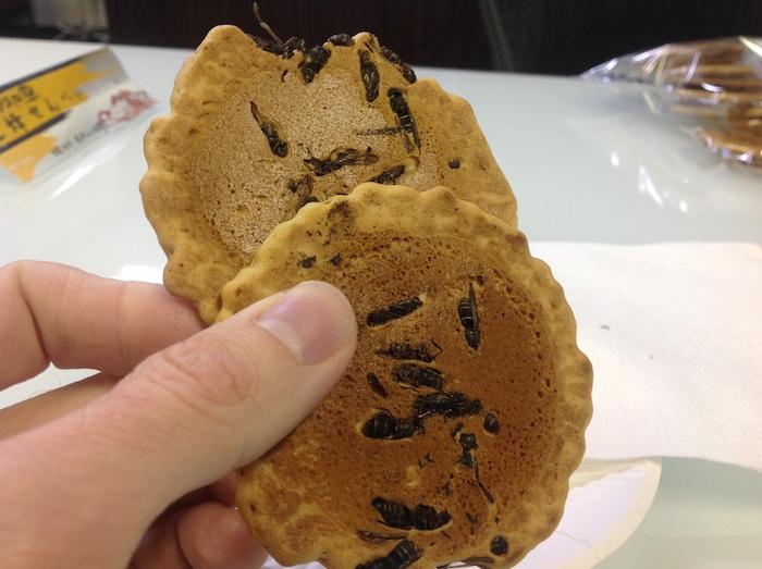 eşekarılı bisküvi