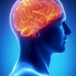 Beyin kanaması belirtileri nelerdir?